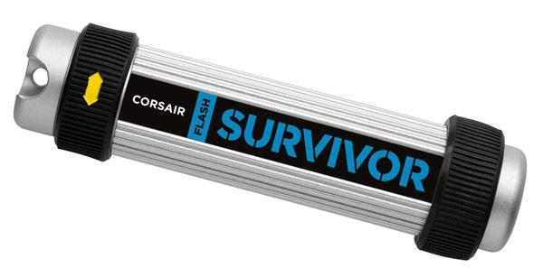 Corsair Survivor